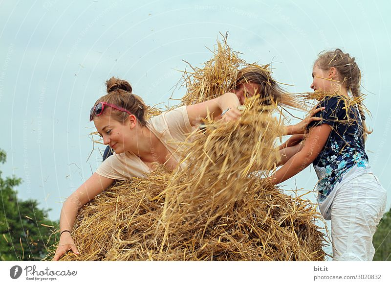 Three girls playing in the straw. Human being Feminine Child Girl Young woman Youth (Young adults) Brothers and sisters Friendship Infancy Group Nature Summer