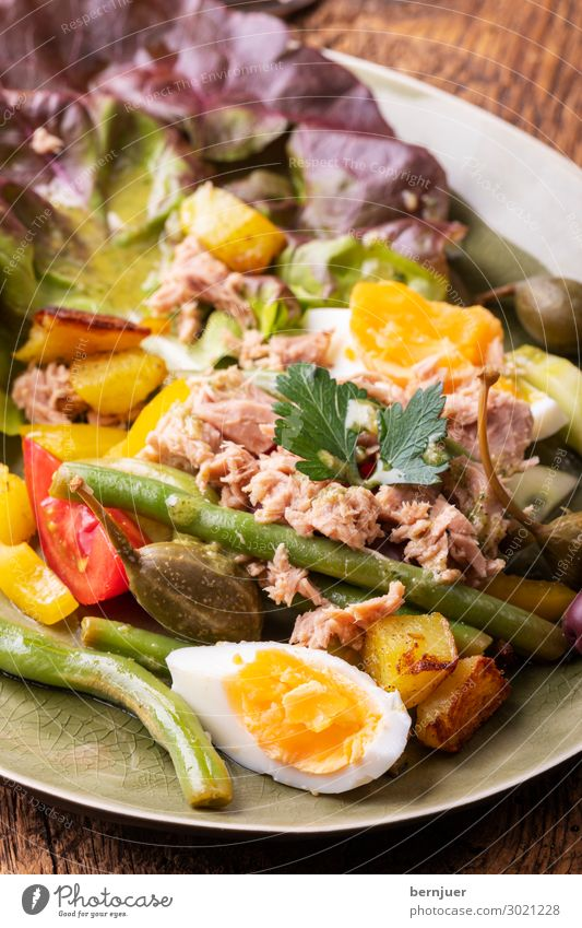 salade nicoise Seafood Vegetable Nutrition Vegetarian diet Diet Plate Restaurant Fresh Delicious Lettuce Gourmet Fish Egg Tomato salubriously Cooking Healthy