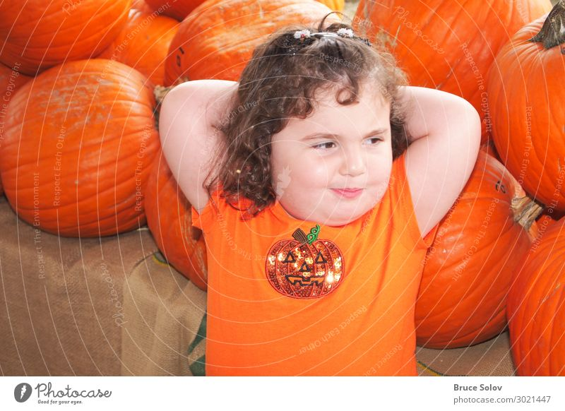 Child in the Pumpkin Patch Contentment Thanksgiving Hallowe'en Human being Feminine Toddler Girl Face 1 3 - 8 years Infancy Event Digital photography