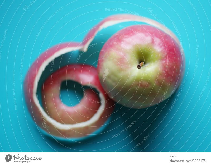 red-green apple with curled skin lies on a turquoise background Food Fruit Apple Apple skin Apple stalk Vegetarian diet Lie Exceptional Fresh Healthy Uniqueness