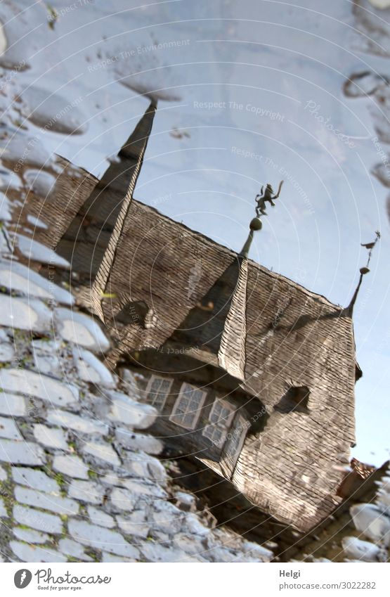 Reflection of a historical building in a puddle on the cobblestone pavement Town Tower Manmade structures Building Architecture Window Roof Street Cobblestones