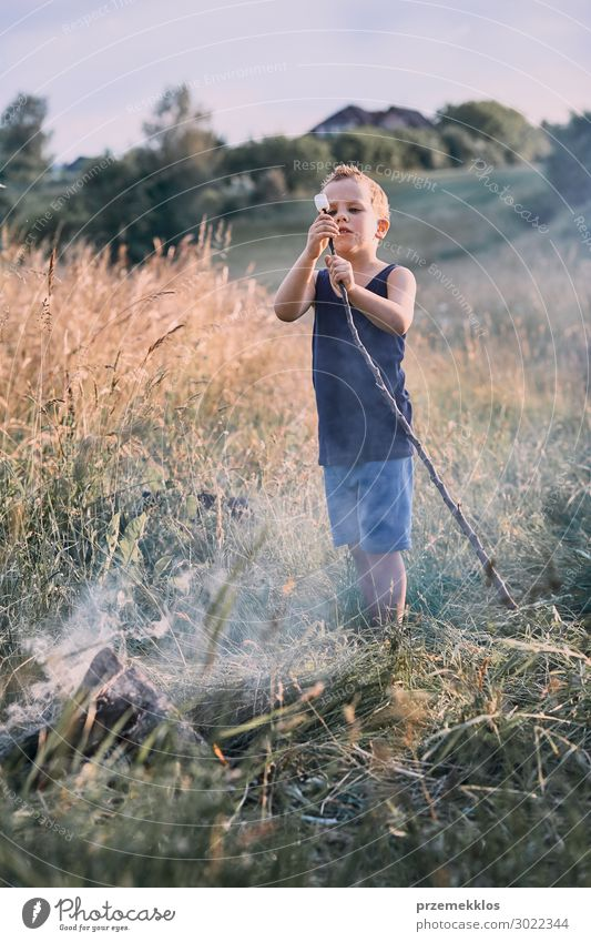 Little boy roasting marshmallow over a campfire Child Human being Vacation & Travel Nature Summer Green Landscape Relaxation Joy Lifestyle Environment Natural