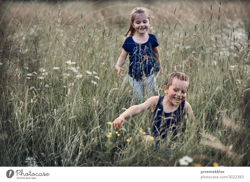 Little happy kids playing in a tall grass Child Human being Vacation & Travel Nature Summer Green Landscape Relaxation Joy Girl Lifestyle Environment Natural