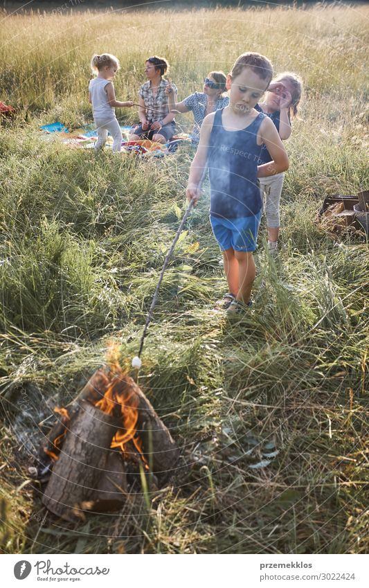 Little boy roasting marshmallow over a campfire Woman Child Human being Vacation & Travel Nature Man Summer Green Landscape Relaxation Joy Girl Lifestyle Adults