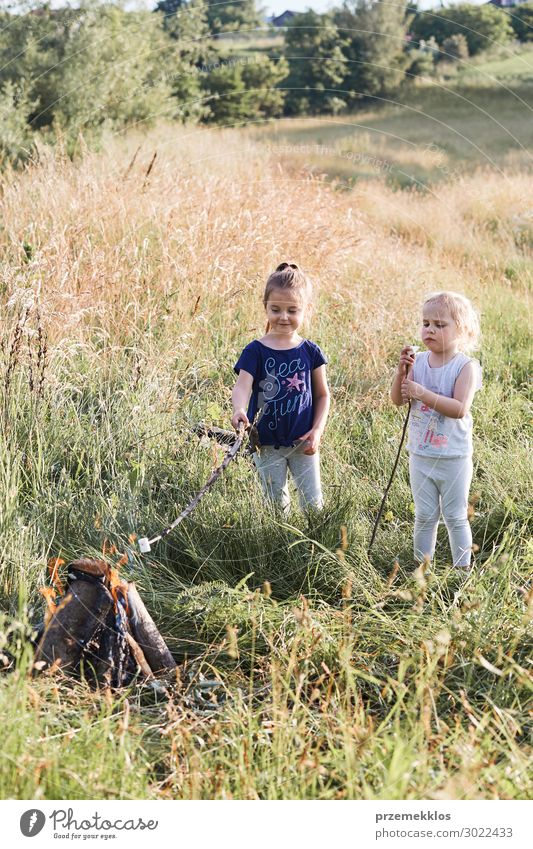 Little girls roasting marshmallows over a campfire Lifestyle Joy Happy Relaxation Vacation & Travel Summer Summer vacation Child Human being Girl Woman Adults
