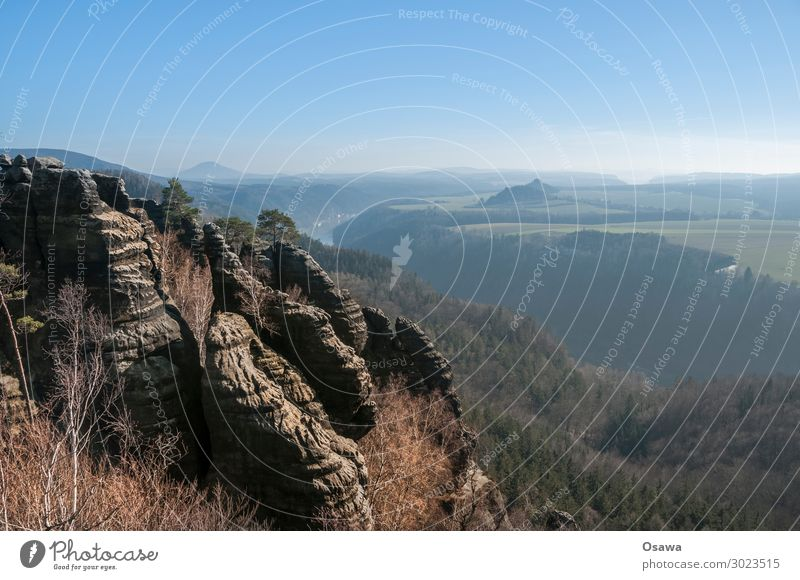 Saxon Switzerland Landscape Mountain Rock Nature Highlands Rock formation Forest Tree Vantage point Panorama (View) Elbsandstone mountains Saxony Hiking