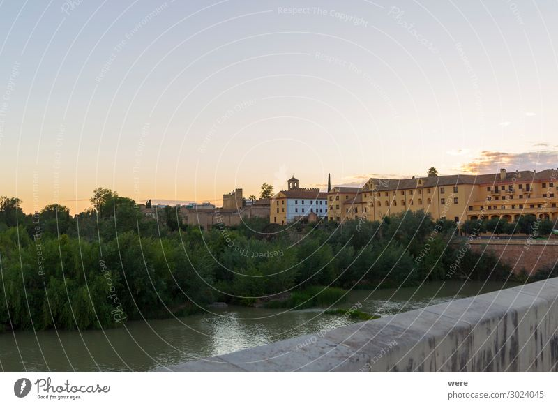 Evening view over the Roman bridge to the old town of Cordoba Downtown Skyline Palace Facade Moody Idyll Pride Andalusia Historic facades holiday spain building