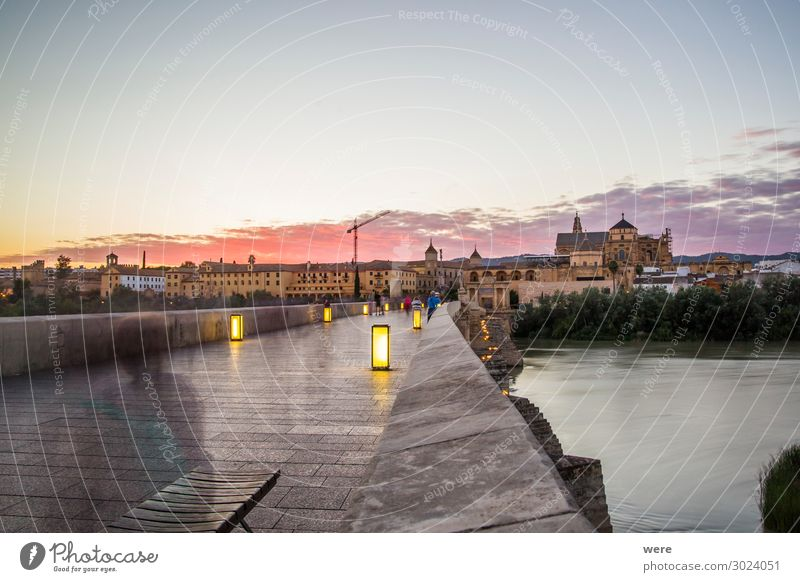Evening view over the Roman bridge to the old town of Cordoba Old town Populated Bridge Facade Exceptional Vacation & Travel Andalusia Historic facades holiday