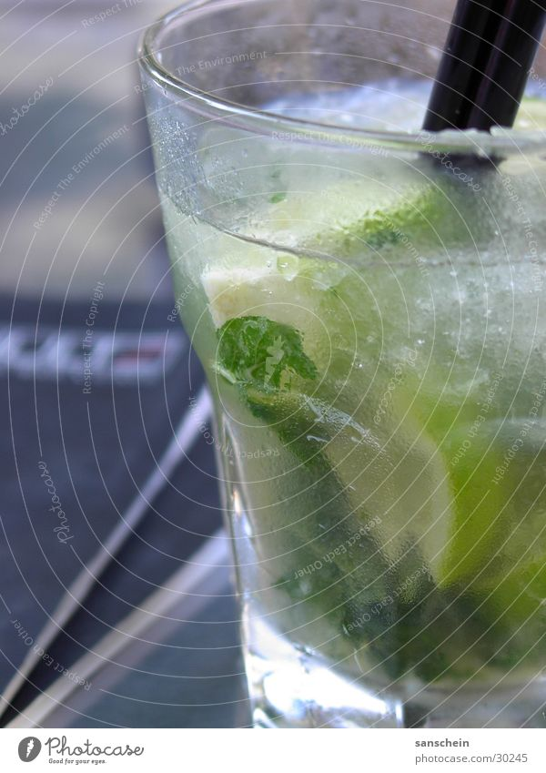 Beverage Water Herbs and spices Alcoholic drinks Cocktail Blade of grass Mineral water Lime Ice cube Mint Rum Mojito