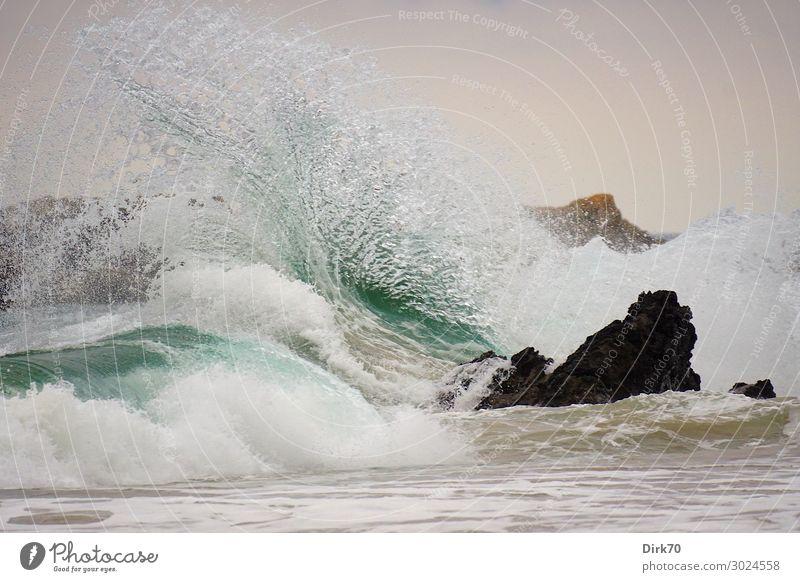 Freak Wave Environment Nature Landscape Elements Water Weather Storm Wind Gale Rock Waves Coast Beach Ocean Biscay Atlantic Ocean Rocky coastline Surf