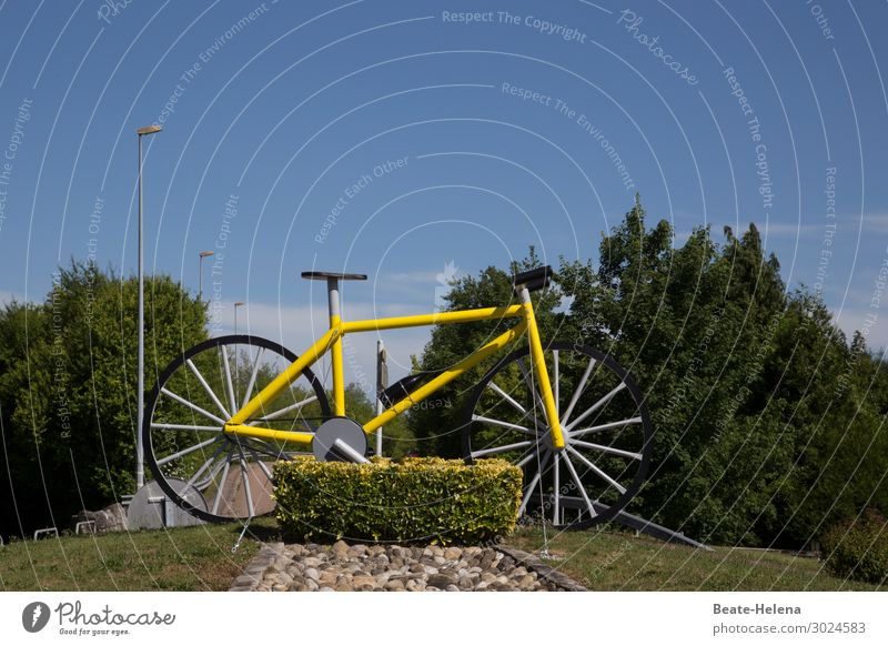Sky Vacation & Travel Summer Landscape Sun Street Yellow Environment Sports Tourism Bicycle Bushes Beautiful weather Cycling Fitness Cycling tour