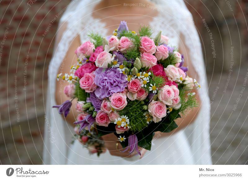 strüüßjer Feminine 1 Human being Happy Joie de vivre (Vitality) Flower Bouquet Wedding Wedding dress Valentine's Day Mother's Day Gift Bride Fragrance Romance