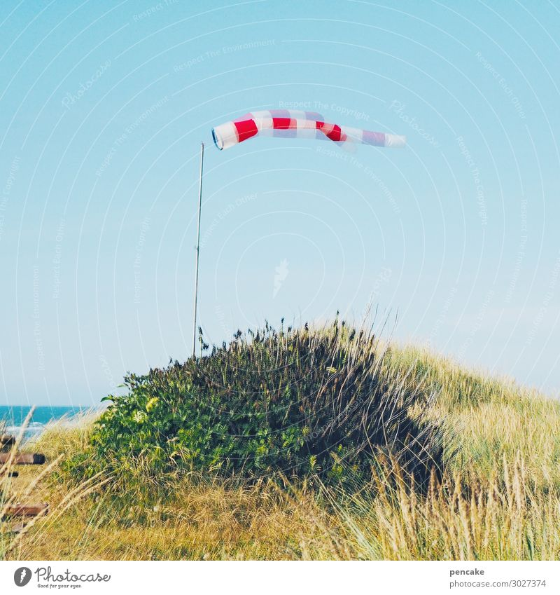 double airy Nature Landscape Elements Sand Sky Cloudless sky Sunlight Summer Beautiful weather Coast North Sea Sign Movement Dance Airy Wind Windsock