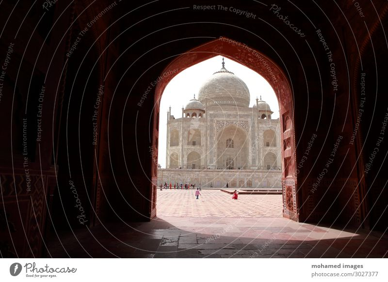 Taj Mahal, India Vacation & Travel Tourism Trip Far-off places Sightseeing City trip Expedition Interior design Decoration Wallpaper Art Museum Architecture