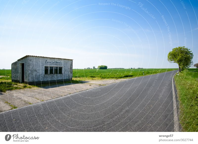 Old Blue Town Green Landscape Black Street Building Gray Horizon Gloomy Simple Cloudless sky Traffic infrastructure Mobility Blue sky