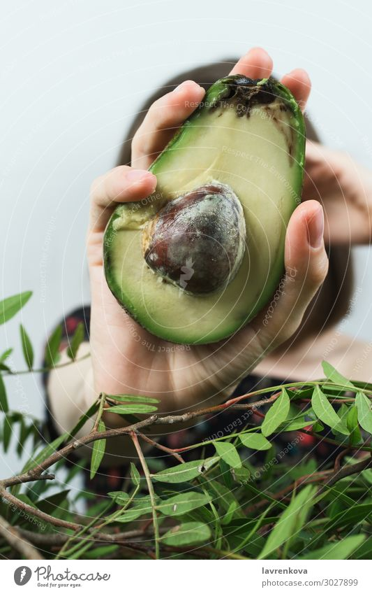 woman's hand holding half of avocado Mature Raw Ingredients Leaf Close-up Organic Fresh Hand Greens Branch Avocado Diet Fat Woman Food Healthy Eating