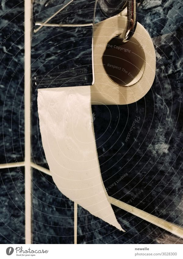 roll of toilet paper hanging on the toilet holder White Design Metal Modern Paper Clean Soft Bathroom Tile Home Household Holder Object photography Public