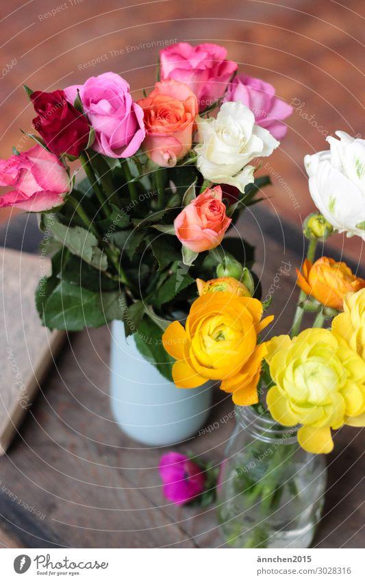 Colourful Decoration Interior shot Flower Blossom Multicoloured Pick Vase Wood Rose Pink White Money Orange Red