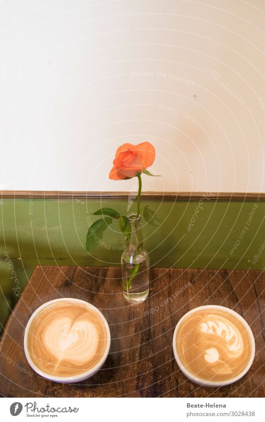 Good morning coffee Breakfast Beverage Drinking Milk Coffee Bowl Cup Lifestyle Fitness Interior design Decoration Flower Rose blossom Café Wall (barrier)