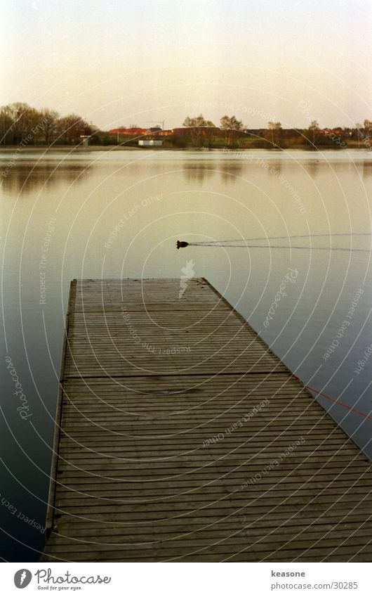 duck Brown Wood Footbridge Beautiful Lake Pond Duck Water Sky Lens Moody http://www.keasone.de