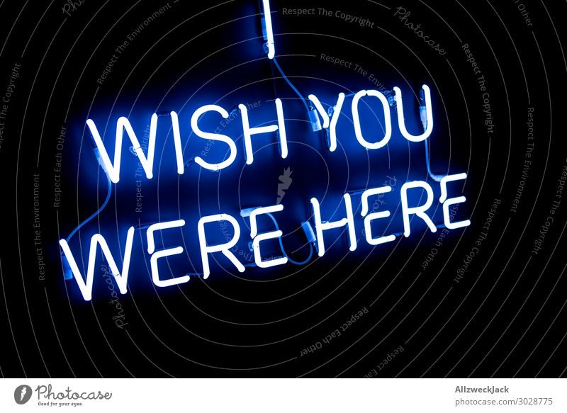 wish you were here Neon light Characters Neon sign Letters (alphabet) Card Light Lighting Illuminate Lamp Information Miss Loneliness Homesickness Black Desire