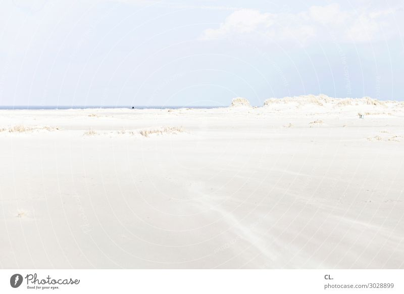 On the beach Vacation & Travel Trip Far-off places Freedom Summer vacation Beach Ocean Island Environment Nature Landscape Sand Air Water Sky Beautiful weather