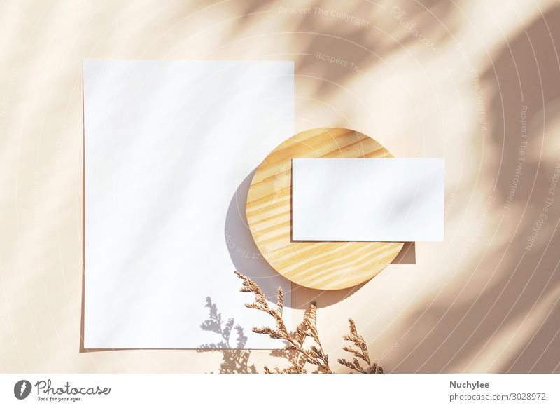 Flat lay of branding identity business name card Nature White Flower Leaf Wood Natural Style Business Copy Space Brown Office Design Paper Clean Information