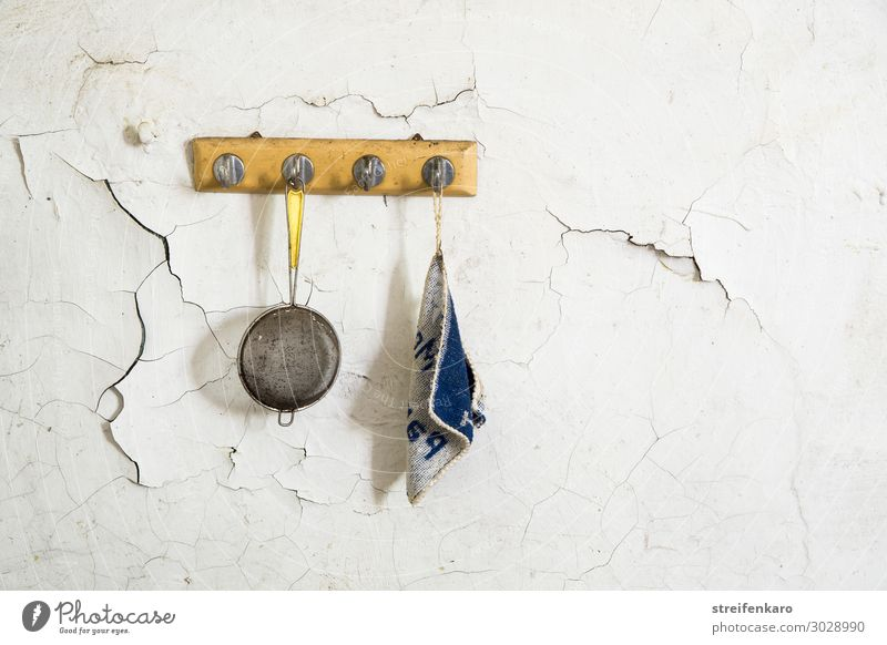 The tea strainer and potholders had not been in use for a long time, as they were hanging next to each other on a hook on the cracked wall of the old house