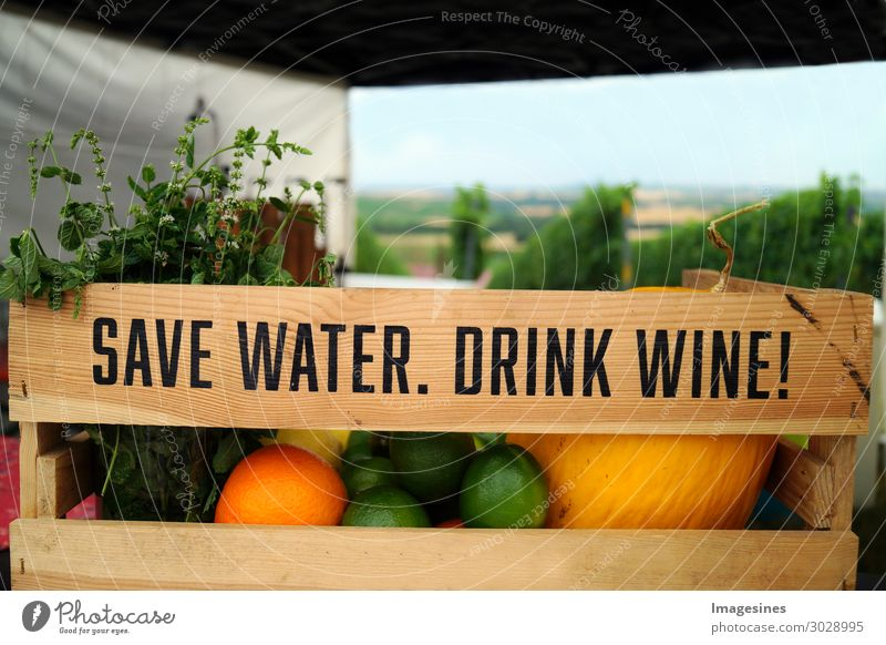 Save Water. Drink Wine. Wine wooden box with fruit and vineyard summer background. Variations of fruits and herbs (mint) in a wooden box with landscape of vineyard with green leaves in the background. funny drink concept.