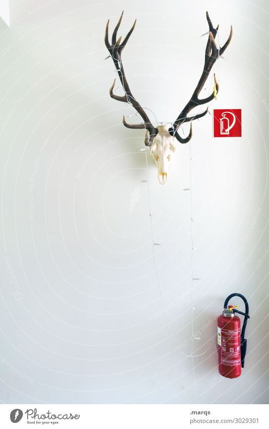 Back to the roots Wall (barrier) Wall (building) Extinguisher Antlers Sign Safety Fire prevention Decoration Colour photo Interior shot Copy Space left