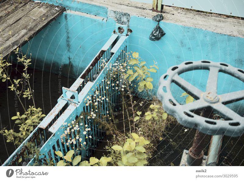 Old water reservoir Plant Bushes Tap Basin Pool border Cistern Concrete Metal Under Turquoise Decline Past Transience Loneliness Czech Republic lost places