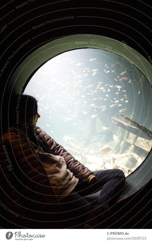 Child Human being Water Calm Girl Window Wild animal Infancy Sit To enjoy Fish 8 - 13 years Jacket Flock Aquarium Porthole