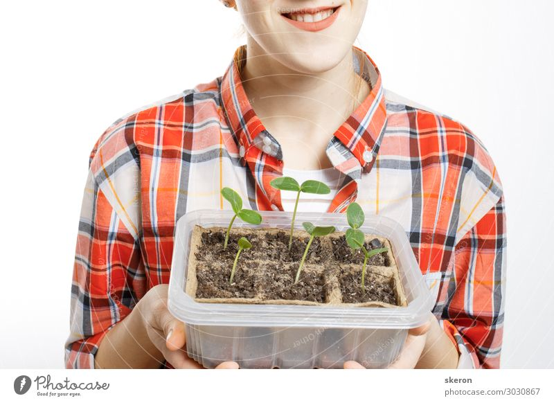 agronomist holding in the hands of young seedlings Lifestyle Shopping Leisure and hobbies Summer Event Parenting Education Academic studies Study