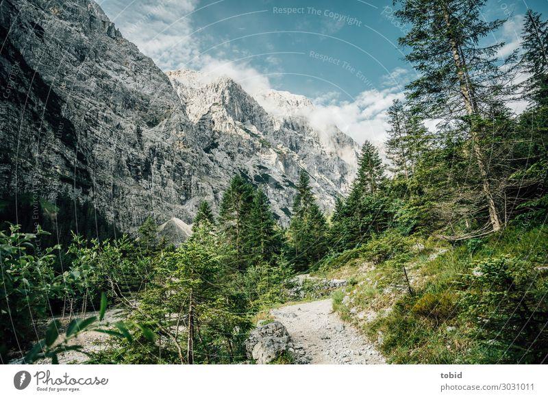 Sky Nature Summer Plant Landscape Tree Clouds Loneliness Forest Far-off places Mountain Lanes & trails Grass Rock Horizon Esthetic