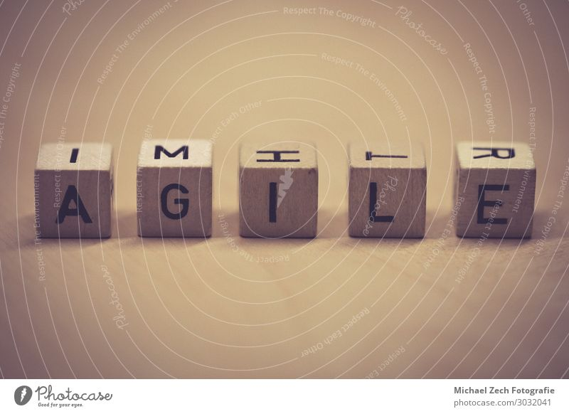 wooden cubes showing the word agile on a table Design Success Work and employment Business Meeting Computer Software Technology Wood Idea Quality Teamwork