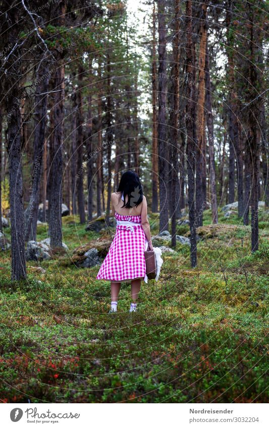 run in the forest Vacation & Travel Trip Hiking Human being Feminine Young woman Youth (Young adults) Woman Adults Nature Landscape Elements Tree Grass Moss