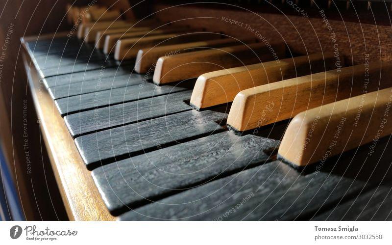 Old wooden musical instrument keyboard closeup, pipe organ macro Music Art Concert Choir Musician Church Dome Wood Retro Black White Inspiration Perspective