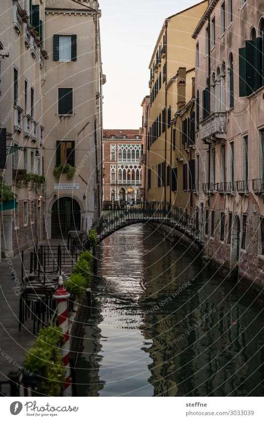 canal Old town Stairs Tourist Attraction Exceptional Channel Bridge Venice Italy Tourism Vacation & Travel Colour photo Exterior shot Deserted Copy Space top