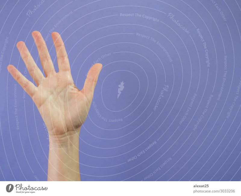 Hand with five fingers raised on purple background Success Human being Woman Adults Arm Fingers Peace 5 5th Caucasian communication Conceptual design Copy Space