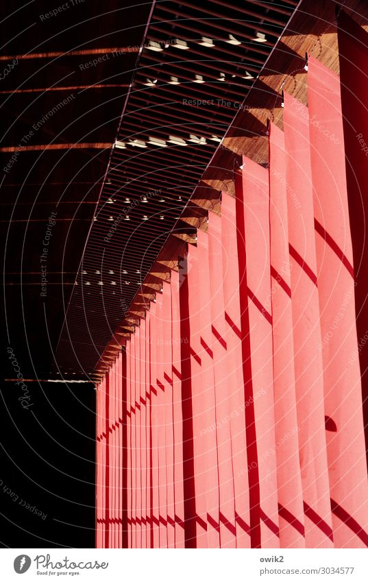 Headed Drape Slat blinds Illuminate Red Rotated Bright Colours Colour photo Interior shot Abstract Pattern Structures and shapes Deserted Copy Space left