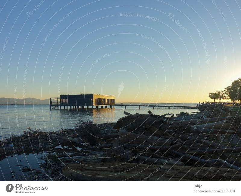 Lake Constance Environment Nature Landscape Water Sky Cloudless sky Horizon Spring Summer Beautiful weather Lakeside Driftwood Deserted Building Architecture