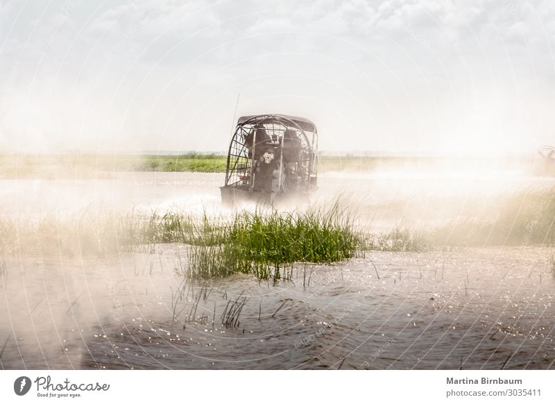 Magic misty morning. Everglades airboat ride in South Florida Beautiful Vacation & Travel Tourism Summer Ocean Environment Nature Landscape Plant Sky Grass Park