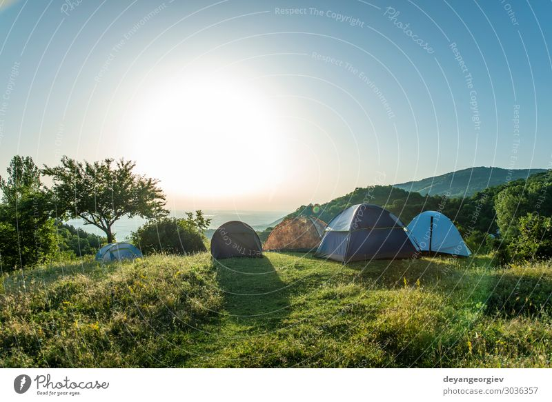 Many tents in the mountain. Sunshine morning in the forest. Lifestyle Joy Relaxation Leisure and hobbies Vacation & Travel Tourism Adventure Camping Summer