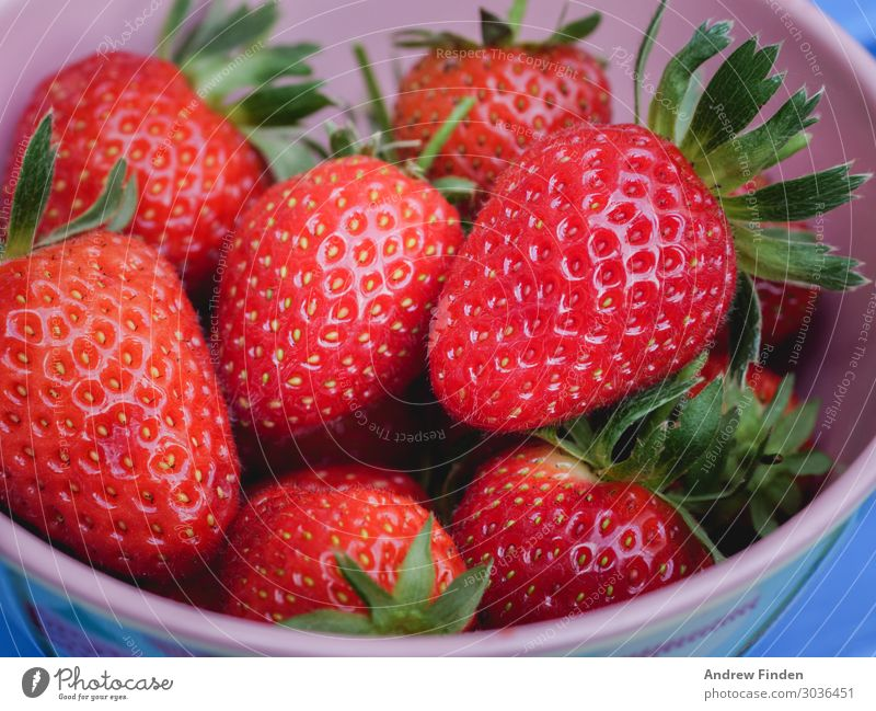 Bowl of strawberries Fruit Healthy Eating Plant Diet Fresh Delicious Juicy Red Summer Mature Colour photo Multicoloured Close-up Detail Copy Space left