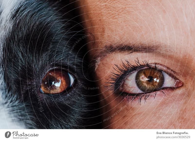 close up view woman and dog eyes together.Love for animals Lifestyle Joy Happy Beautiful Relaxation Leisure and hobbies Playing Vacation & Travel Summer Woman