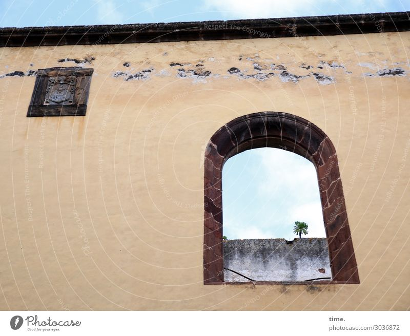 Airy in the room. Sky Beautiful weather Tree Palm tree Downtown House (Residential Structure) Church Ruin Architecture Wall (barrier) Wall (building) Facade