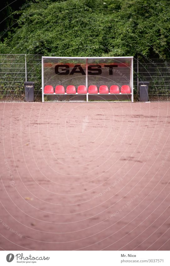 Guest.place Leisure and hobbies Sports Ball sports Sports team Foot ball Sporting Complex Football pitch Plant Bushes Leaf Athletic Substitute's bench