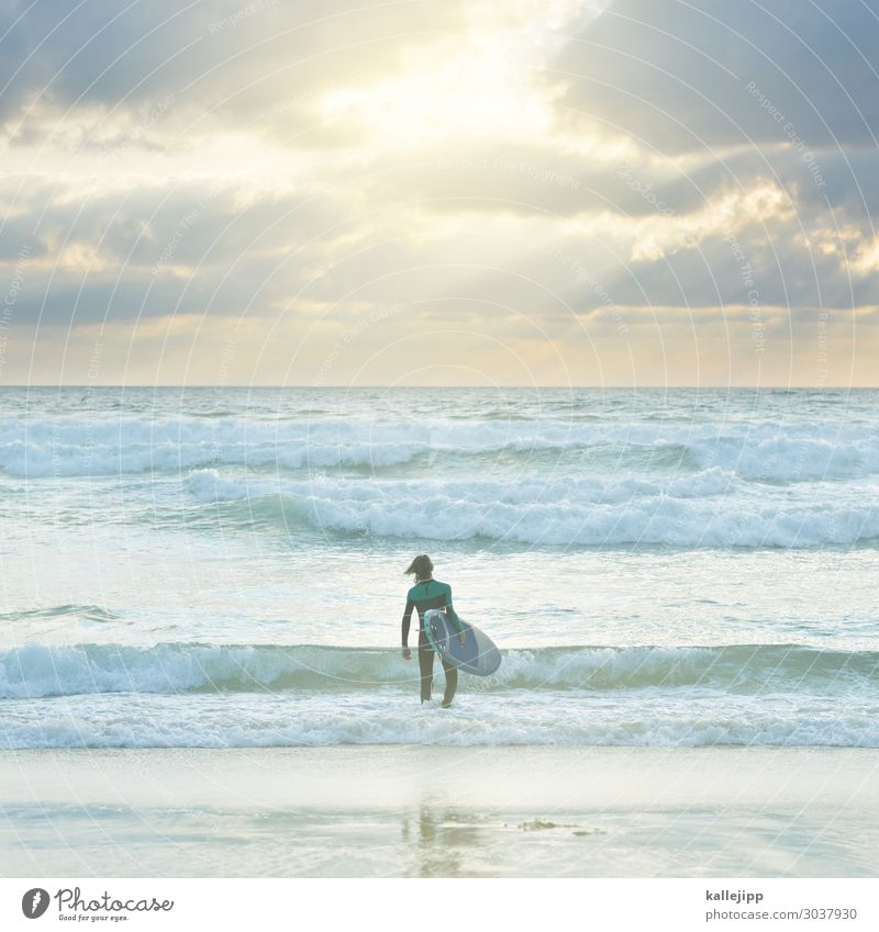 in his element Sports Aquatics Human being Child Boy (child) Youth (Young adults) 1 8 - 13 years Infancy Environment Nature Waves Coast Ocean Wetsuit Surfing