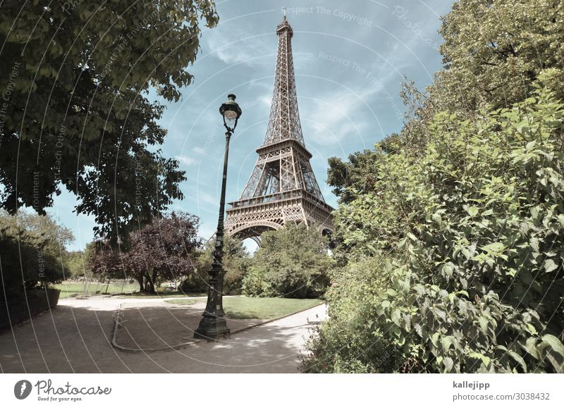 tourist magnet Vacation & Travel Tourism Sightseeing City trip Summer Summer vacation Sun Environment Nature Beautiful weather Plant Tree Eiffel Tower Point