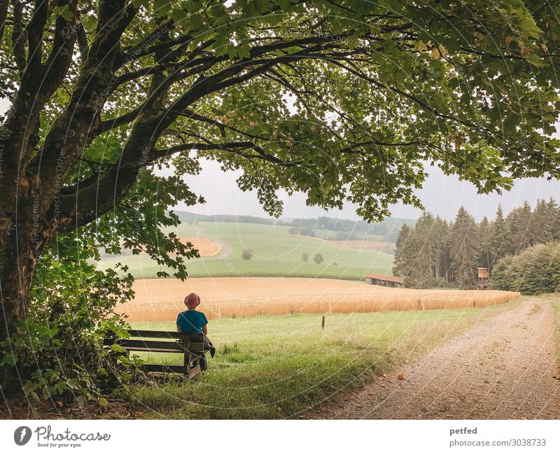 rest Relaxation Calm Summer Hiking Woman Adults Nature Landscape Horizon Tree Meadow Field Forest Observe Think Looking Sit Dream Wait Happy Infinity Natural
